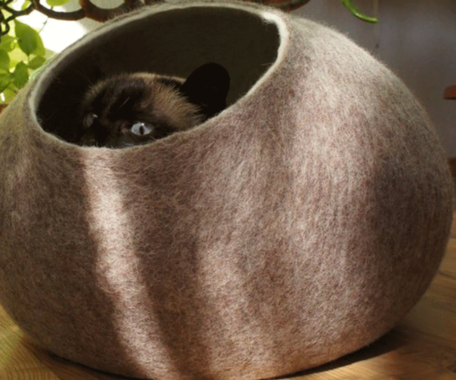 #5 unique gifts for cat lovers: The Cat Cave