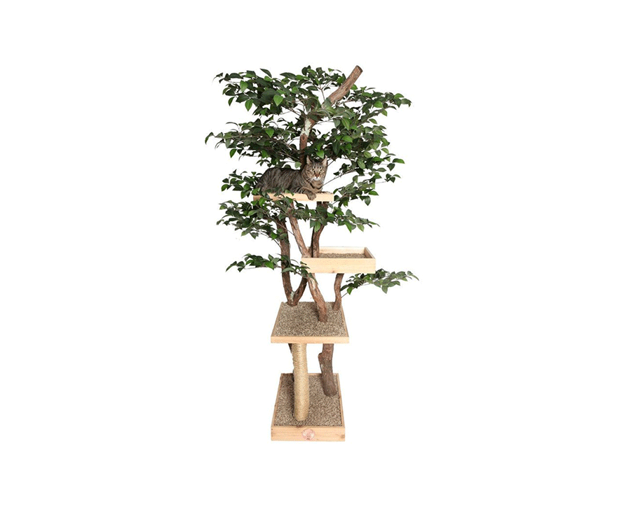 #1 unique gifts for cat lovers: Luxury Cat Tree House