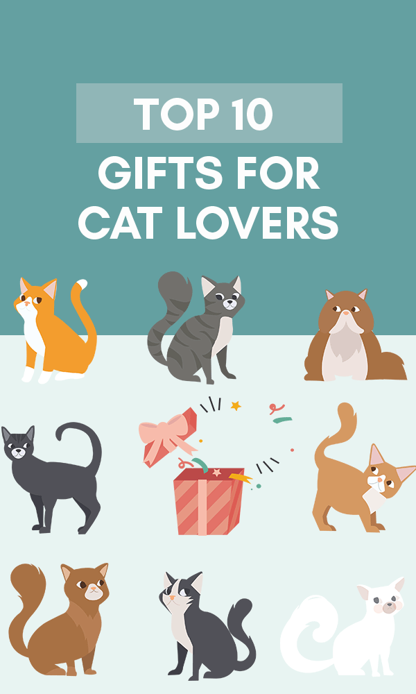 Title Infographic for our top 10 gifts for cat lovers