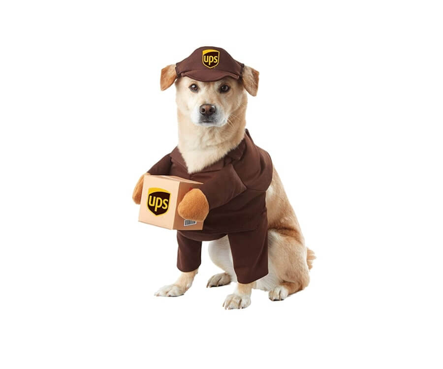 #9 unique & funny gifts for dog lovers: UPS Delivery Man Dog Costume