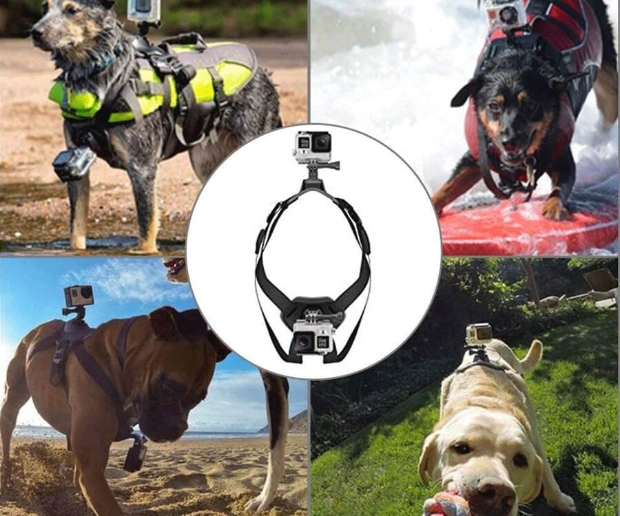 #41 best dog gifts: GoPro Harness