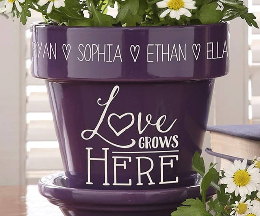 #32 best valentines day gifts for her: love grows here pot