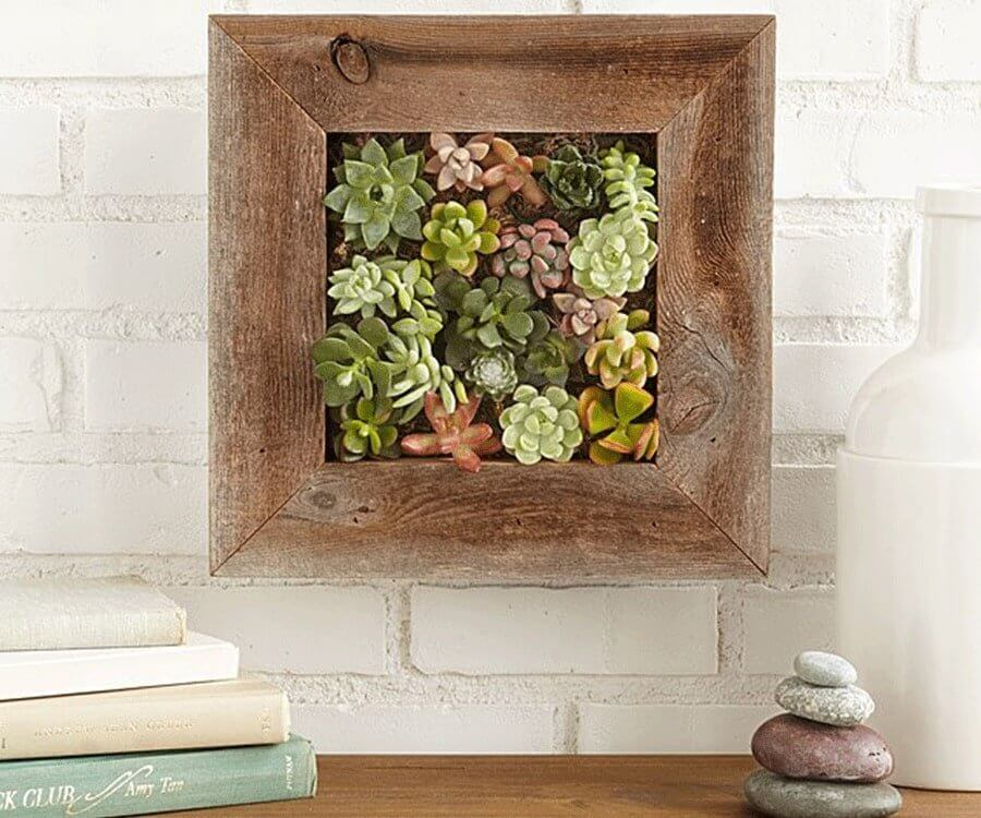 #29 eco friendly gifts for her: living wall planter