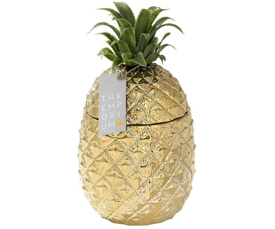 #22 gifts for the woman who has everything: Pineapple Ice Bucket